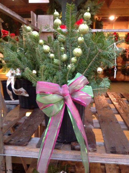 Outdoor Baskets Floral Arrangements