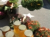 Trees To Please Table at the Market
